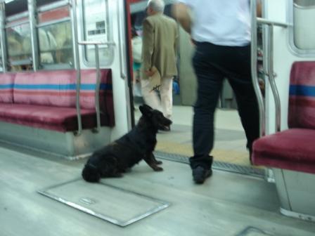 Vagao do metro de buenos aires