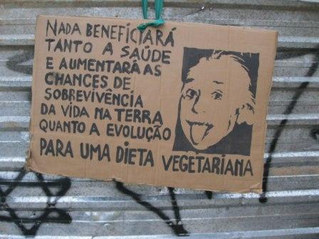 Einstein vegetariano