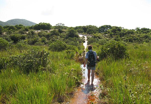 trilhas pela dunas de floripa