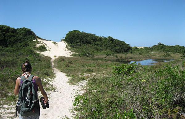 trilha praia joaquina