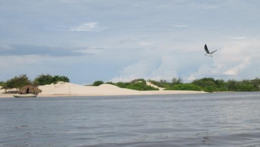 lancha rio preguicas