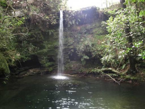 cascata do guatambu
