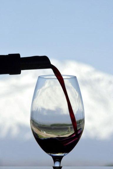 vinho mendoza