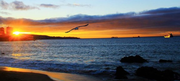 litoral vina del mar