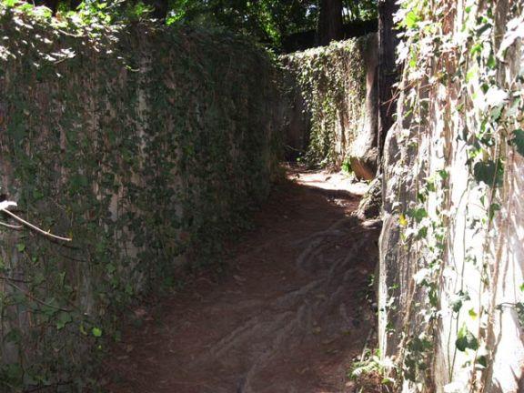 parque com labirinto
