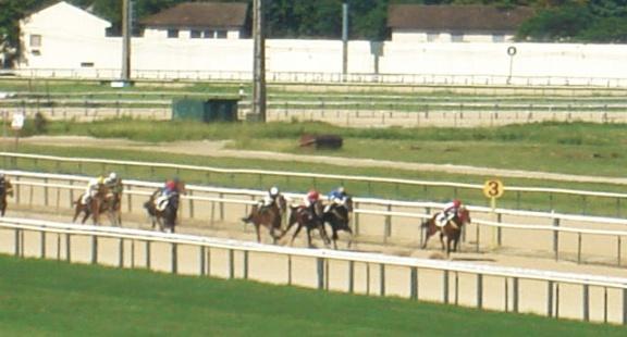 jockey hipodromo