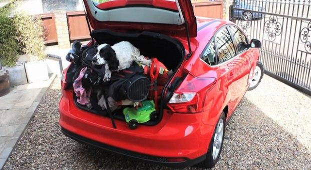 porta mala em viagem de carro