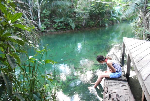 blogueira de ecoturismo