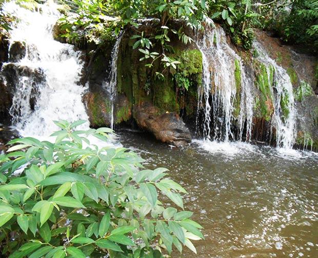 Cachoeira do Sai-andorinha