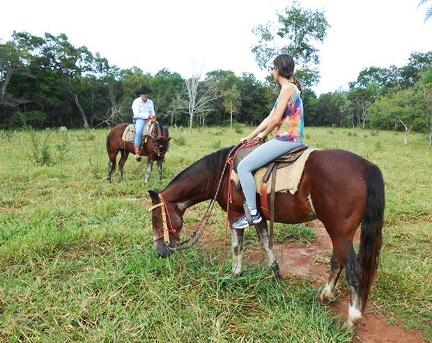 passeio cavalo mimosa