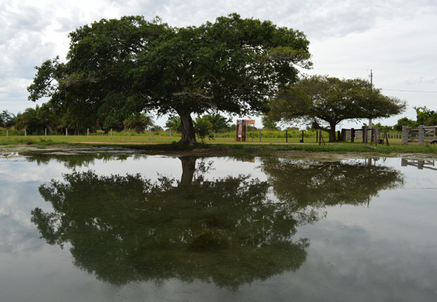 lago ceita core