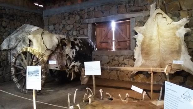 parque gaucho esculturas