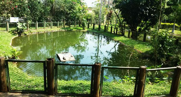 lago de zoologico