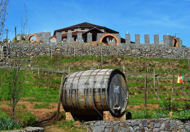 vinho Salvati