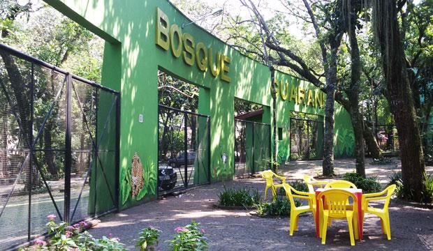 bosque guarani